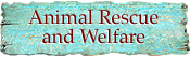 Animal welfare organizations and charities, animal shelters, rescue and rehabilitation